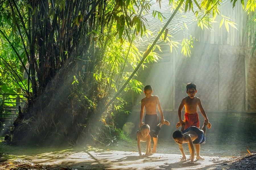 Cây tre trong lòng người Việt