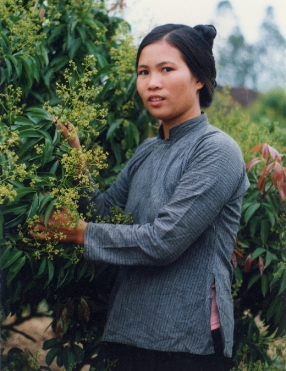 Người Ngái ở Việt Nam