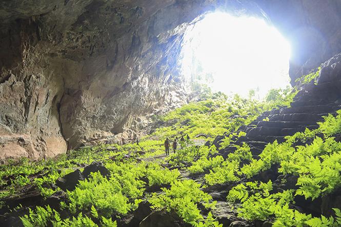 Quảng Bình: Khai thác sản phẩm du lịch khám phá hang Đại Ả, hang Over, hang Pygmy