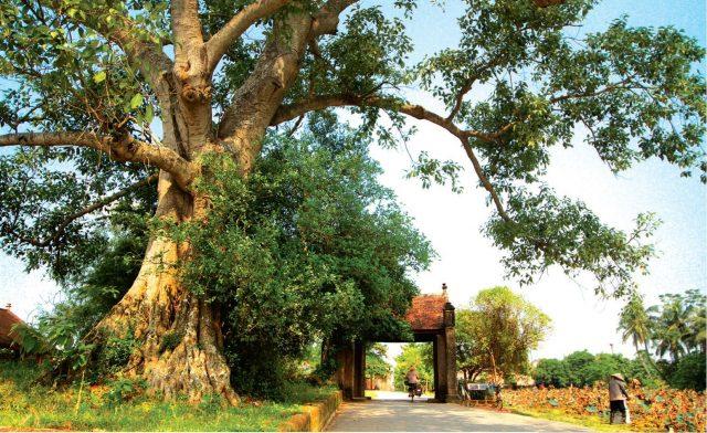 Làng cổ Đường Lâm: Tiền nhân dặn gì nơi cổng làng?